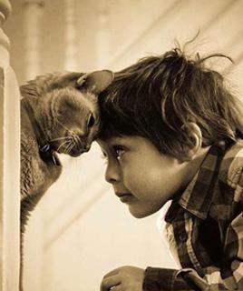 cat-and-child3